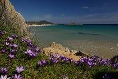 vue étonnante de la Sardaigne de chia de plage Image stock