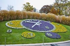 Vue étonnante de matin d'horloge de fleur à Genève, Suisse Photos stock