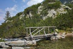 Vue étonnante de pont en bois au-dessus de rivière près de hutte de Vihren, montagne de Pirin Image libre de droits