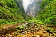 Vue étonnante de rivière de montagne parmi des bois et les falaises raides images stock