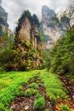 Vue étonnante des falaises raides parmi les bois et les criques verts photographie stock