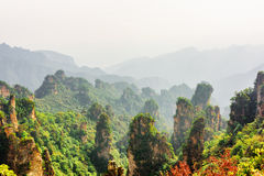 Vue étonnante des piliers naturels boisés de grès de quartz photo libre de droits