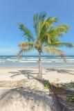 Vue étonnante des plages près d'Itacare Photos stock