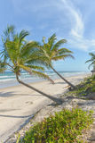 Vue étonnante des plages près d'Itacare Images stock