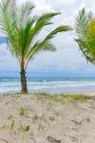 Vue étonnante des plages près d'Itacare Photos libres de droits