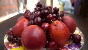 Vue étroite de différents fruits frais, nectarines et cerises banque de vidéos