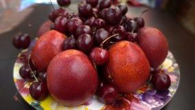 Vue étroite de différents fruits frais, nectarines et cerises clips vidéos