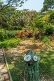 Vue étroite de jardin vert avec l'herbe, les arbres, les usines, les ombres et la voie, Chennai, Tamil Nadu, Inde, le 29 janvier  Images stock