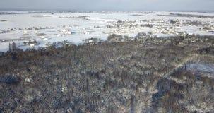 Vue aérienne au-dessus d'une forêt neigeuse couverte de neige près des bâtiments de campagne Mouche au-dessus de sapin et de pins banque de vidéos