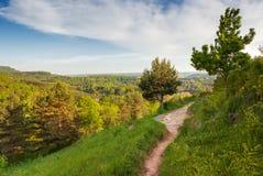 Vue aérienne au-dessus de chemin en parc de Kurortny Photographie stock libre de droits