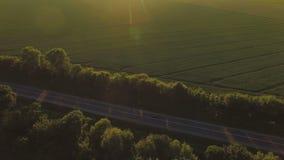 Vue aérienne au-dessus de route entre les plantations et les champs verts clips vidéos