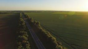 Vue aérienne au-dessus de route entre les plantations et les champs verts banque de vidéos