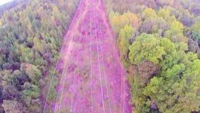 Vue aérienne au-dessus de York la Caroline du Sud au coucher du soleil banque de vidéos