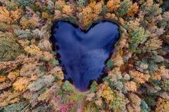 Vue aérienne d'étang en forme de coeur Photographie stock libre de droits