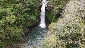 Vue aérienne d'Hawaï de cascade clips vidéos