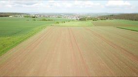 Vue aérienne d'un champ de maïs banque de vidéos