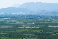 Vue aérienne de belle vallée de Neretva en Croatie du sud photo libre de droits