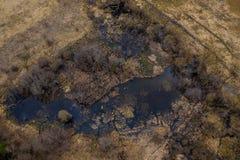 Vue aérienne de bourdon de petit marécage le jour ensoleillé de soirée de ressort photos libres de droits