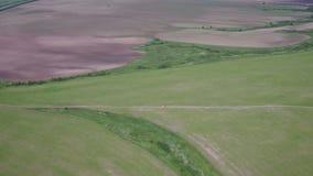 Vue aérienne de camion transportant les usines agricoles récemment récoltées sur le champ clips vidéos