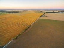 Vue aérienne de champ et de pâturages agricoles moissonnés aux soleils Image libre de droits
