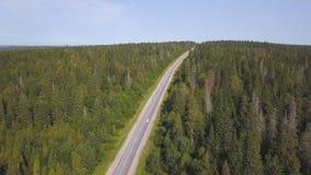 Vue aérienne de ci-dessus de la route de campagne par la forêt verte d'été en été projectile Conduite Vue courbe de clips vidéos