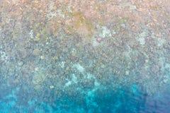 Vue aérienne de Coral Reef peu profonde en Raja Ampat images libres de droits