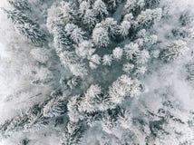 Vue aérienne de forêt d'hiver couverte de neige, vue d'en haut photos stock