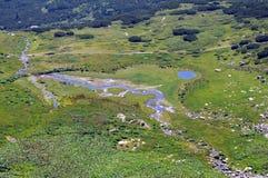 Vue aérienne de l'étang et du courant Photographie stock libre de droits