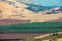 Vue aérienne de la colline de la mer de la Galilée photo stock