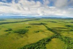 Vue aérienne de la forêt verte dans le nord du territoire de Khabarovsk, Extrême Orient, Russie photo stock