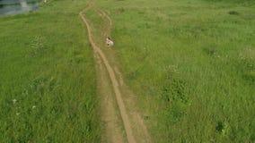 Vue aérienne de la maman et de son petit enfant étreignant sur la voie rurale photo stock