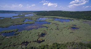 Vue aérienne de lac Srebarna près de Silistra, Bulgarie photographie stock libre de droits