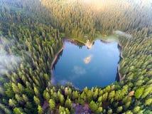 Vue aérienne de lac Synevir en montagnes carpathiennes en Ukraine images libres de droits
