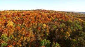 Vue aérienne de longueur Vol au-dessus des montagnes d'automne avec des forêts, des prés et des collines dans la lumière molle de clips vidéos