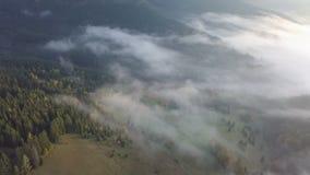 Vue aérienne de matin brumeux dans le pays d'automne au lever de soleil Vol de bourdon banque de vidéos
