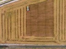 Vue aérienne de moissonneuse de riz faisant les chiffres géométriques photographie stock