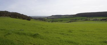 Vue aérienne de paysage de campagne dans la campagne française, la Gironde photos libres de droits