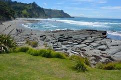 Vue aérienne de paysage de plage Nouvelle-Zélande d'île de chèvre image libre de droits