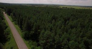 Vue aérienne de paysage profond de forêt banque de vidéos