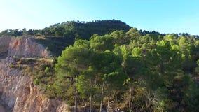 Vue aérienne de pin de montagne de bourdon banque de vidéos