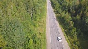 Vue aérienne de plaine de forêt et voiture qui montent sur la route clip Vue supérieure de l'équitation de voiture sur le chemin  banque de vidéos