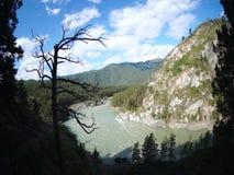 Vue aérienne de rivière rapide dans la forêt clips vidéos