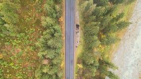 Vue aérienne de route au milieu des montagnes, sur lesquelles les pins se développent Photos libres de droits