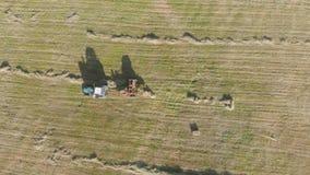 Vue aérienne de tracteur avec le foin dans le domaine Balles de foin empilées dans la remorque Travail agricole Le concept de banque de vidéos
