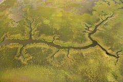 Vue aérienne de tributaire. Photos libres de droits