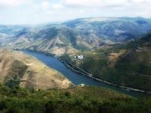 Vue aérienne de wineyards de rivière de vallée de Douro Photo libre de droits
