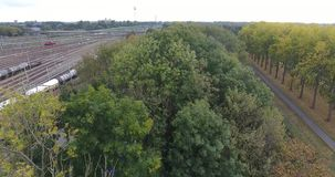 Vue aérienne des arbres colorés d'automne en parc, jonction ferroviaire, Pays-Bas clips vidéos