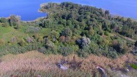 Vue aérienne des arbres et des roseaux sur la petite île sur le lac Seliger, Russie banque de vidéos