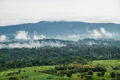 Vue aérienne des collines dans rural couvert de brouillard pendant le matin images libres de droits