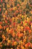 Vue aérienne des couleurs changeantes d'automne de la Nouvelle Angleterre Photo libre de droits